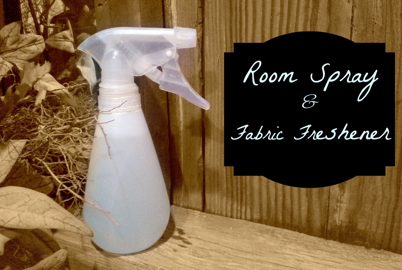 A non- toxic way to freshen your room and fabrics via: How To Just About Anything