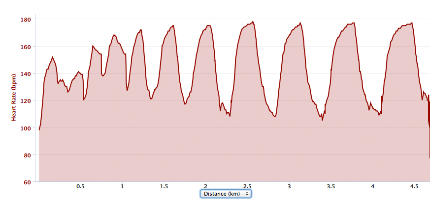 how to work out max heart rate