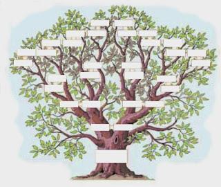 la psychogénéalogie par l'arbre généalogique pour comprendre ses origines de générations en générations