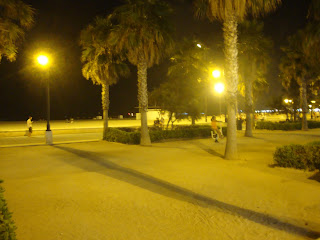 Valencia Beach at night photo - Palm trees