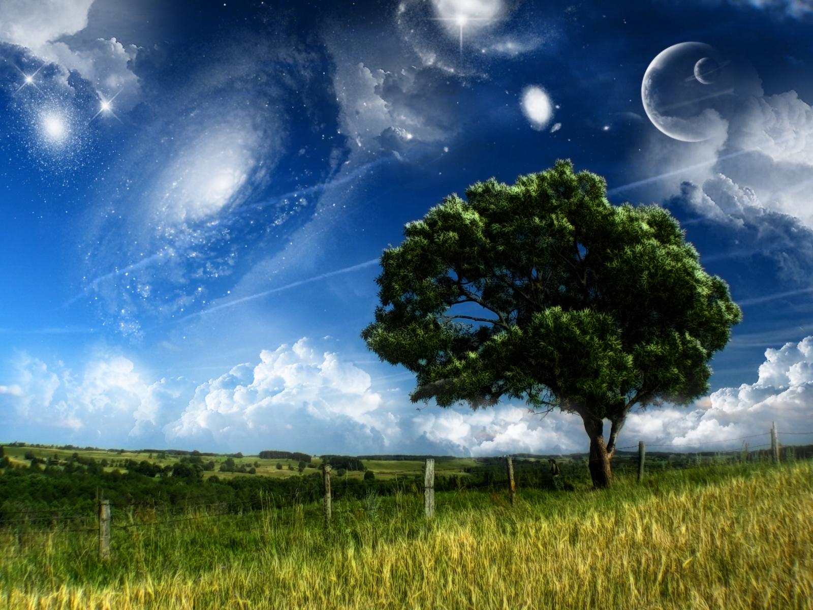 http://2.bp.blogspot.com/-o6xAFHvYgPo/TeW1VTM-ngI/AAAAAAAABjk/SIuQfevmG38/s1600/dreams.jpg