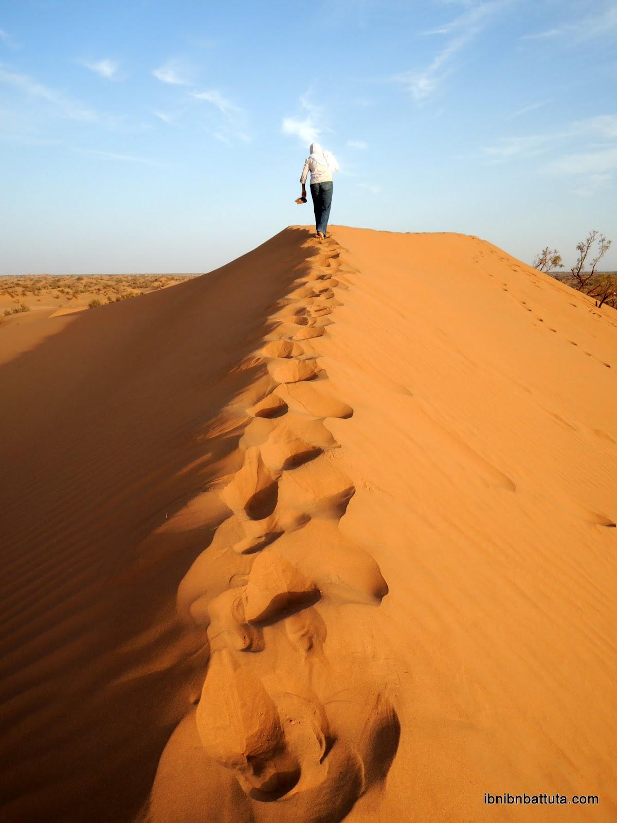 Sahara desert (Mhamid, Morocco)