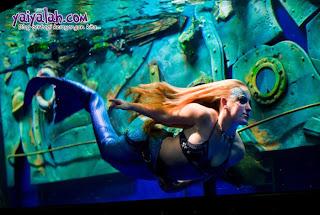 foto gambar putri duyung berenang