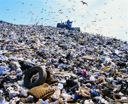 Environment/Landfills term paper 1928