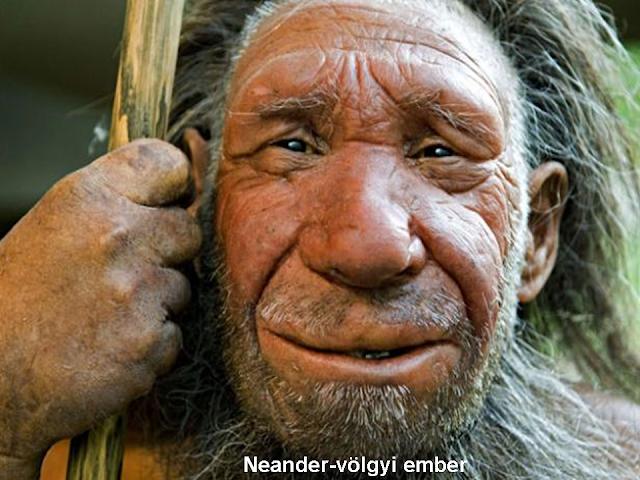 a neander-völgyi ember