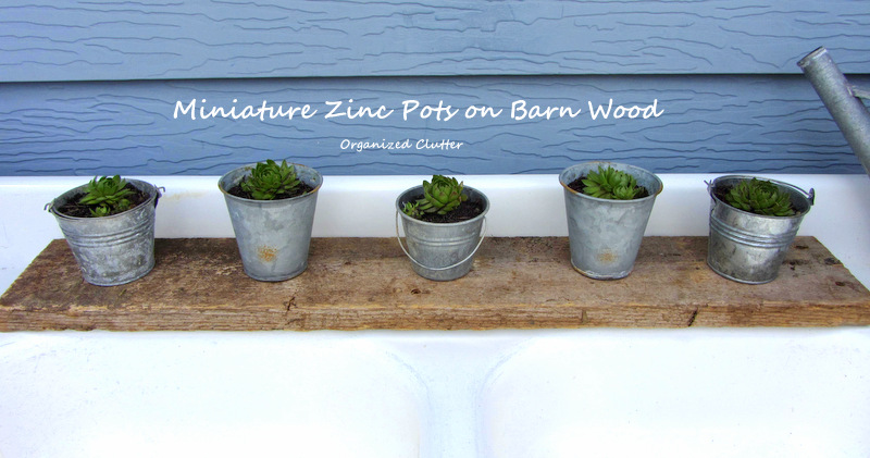 Zinc Pails/Pots & Barn Wood Planter Tutorial www.organizedclutterqueen.blogspot.com