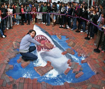 shark optical illusion