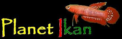 Planet Ikan