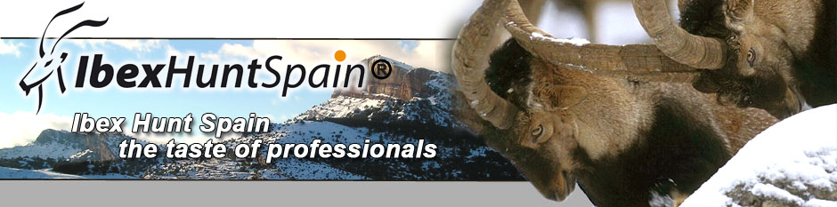 Spanish Ibex Hunts | Ibex Hunting in Spain    | ibexhuntspain.com