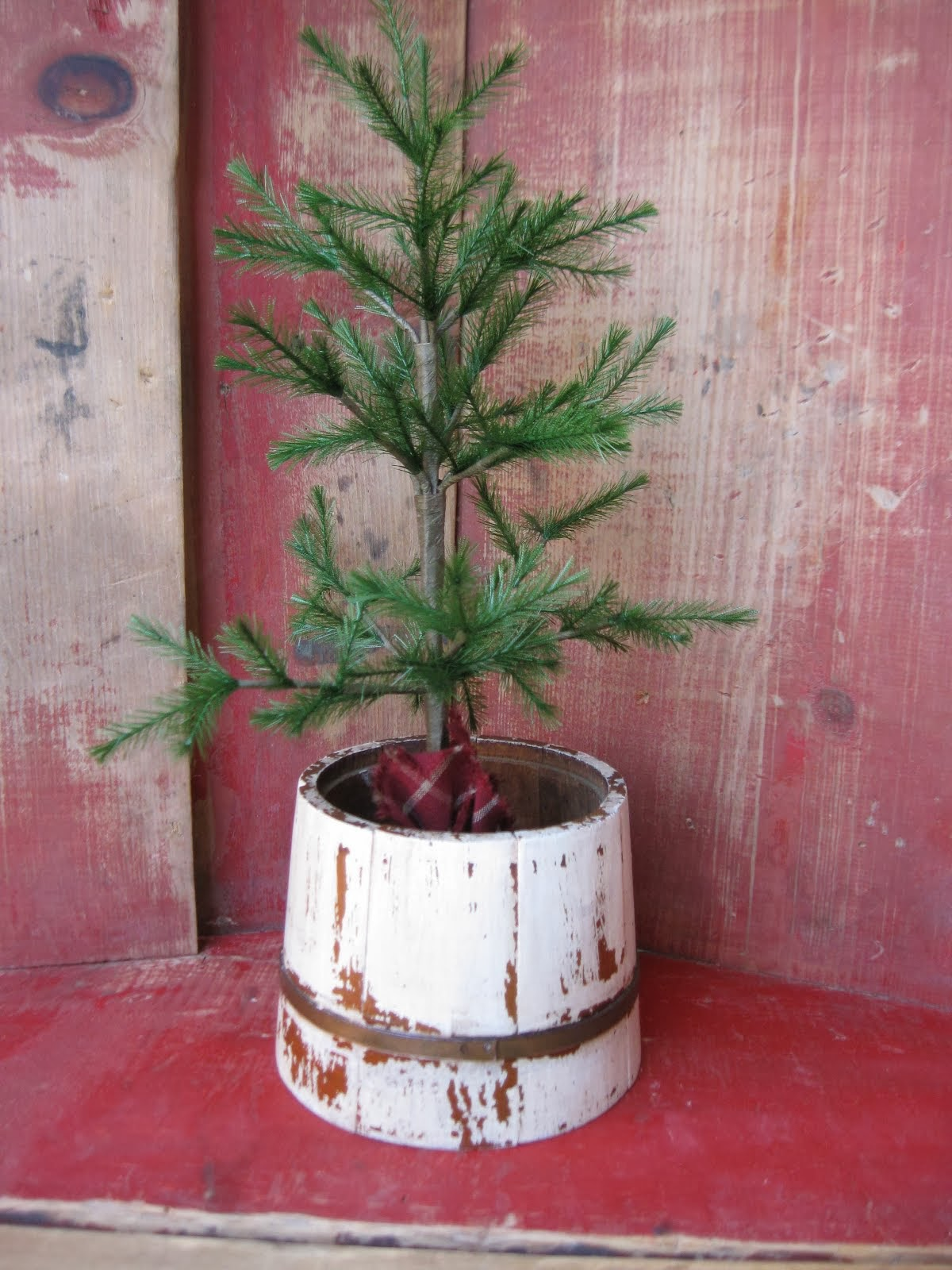 Tiny Sugar Bucket Tree