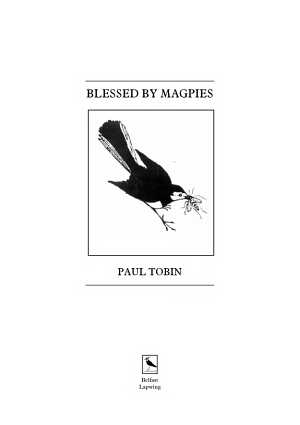 Blessed by Magpies
