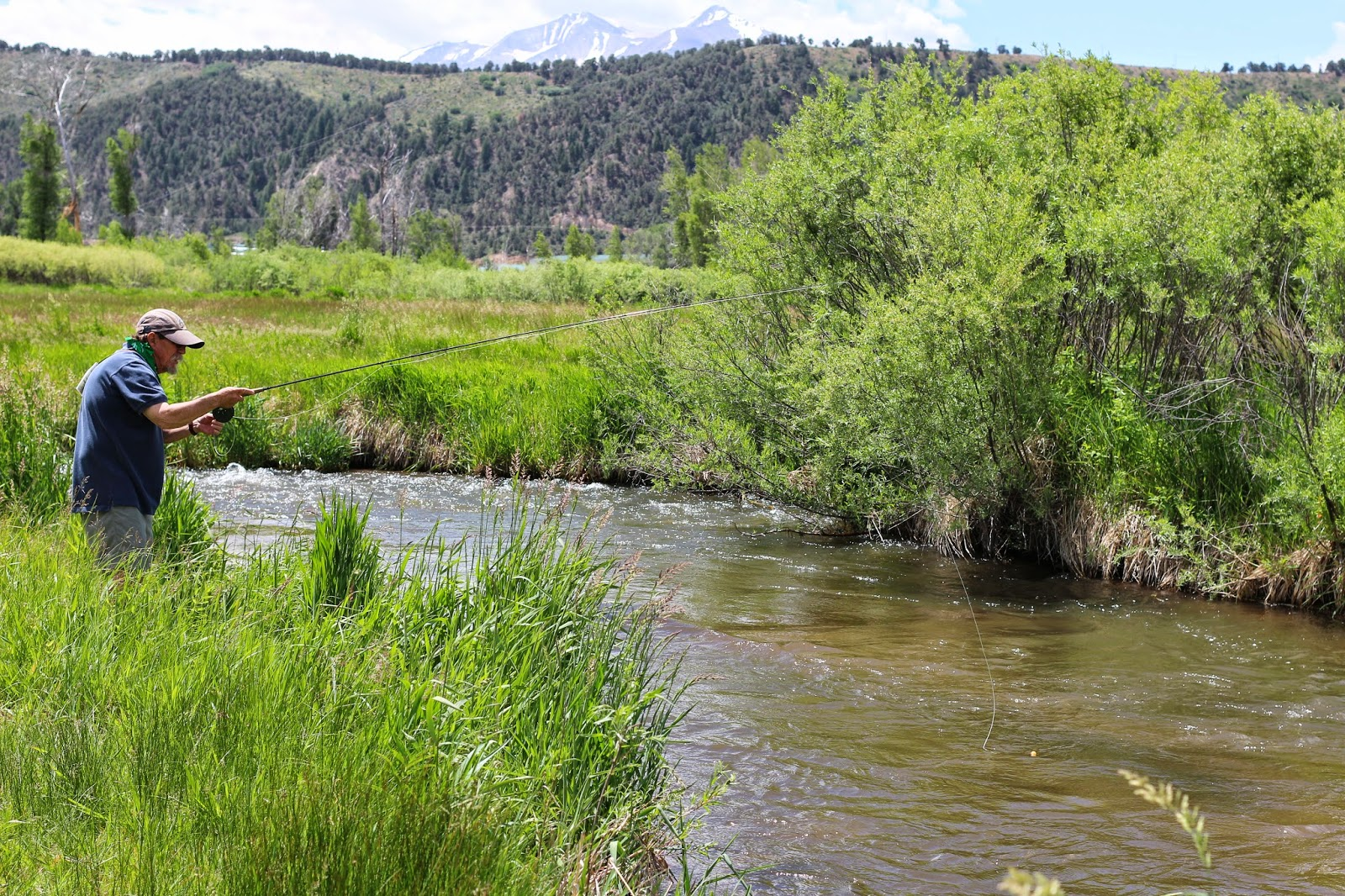 Jay scott outdoors 6 18 14 colorado fishing report for Colorado fishing report