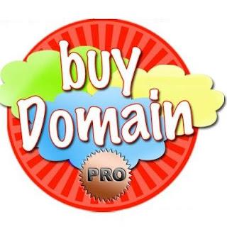 .Pro Domain Name