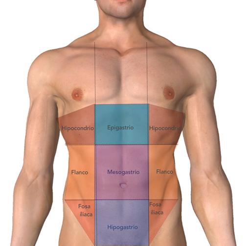 El dolor en lo bajo del vientre en la parte derecha y en los riñones