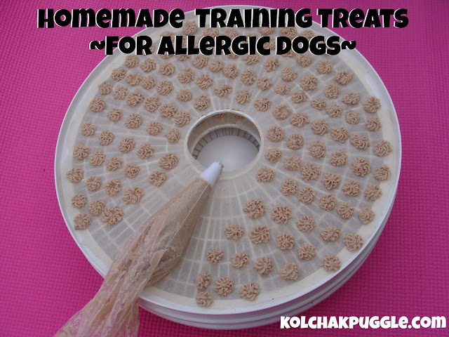 homemade training treats for allergic dogs