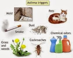 Allergy Induced Asthma Symptoms, Causes, Treatment and Prevent