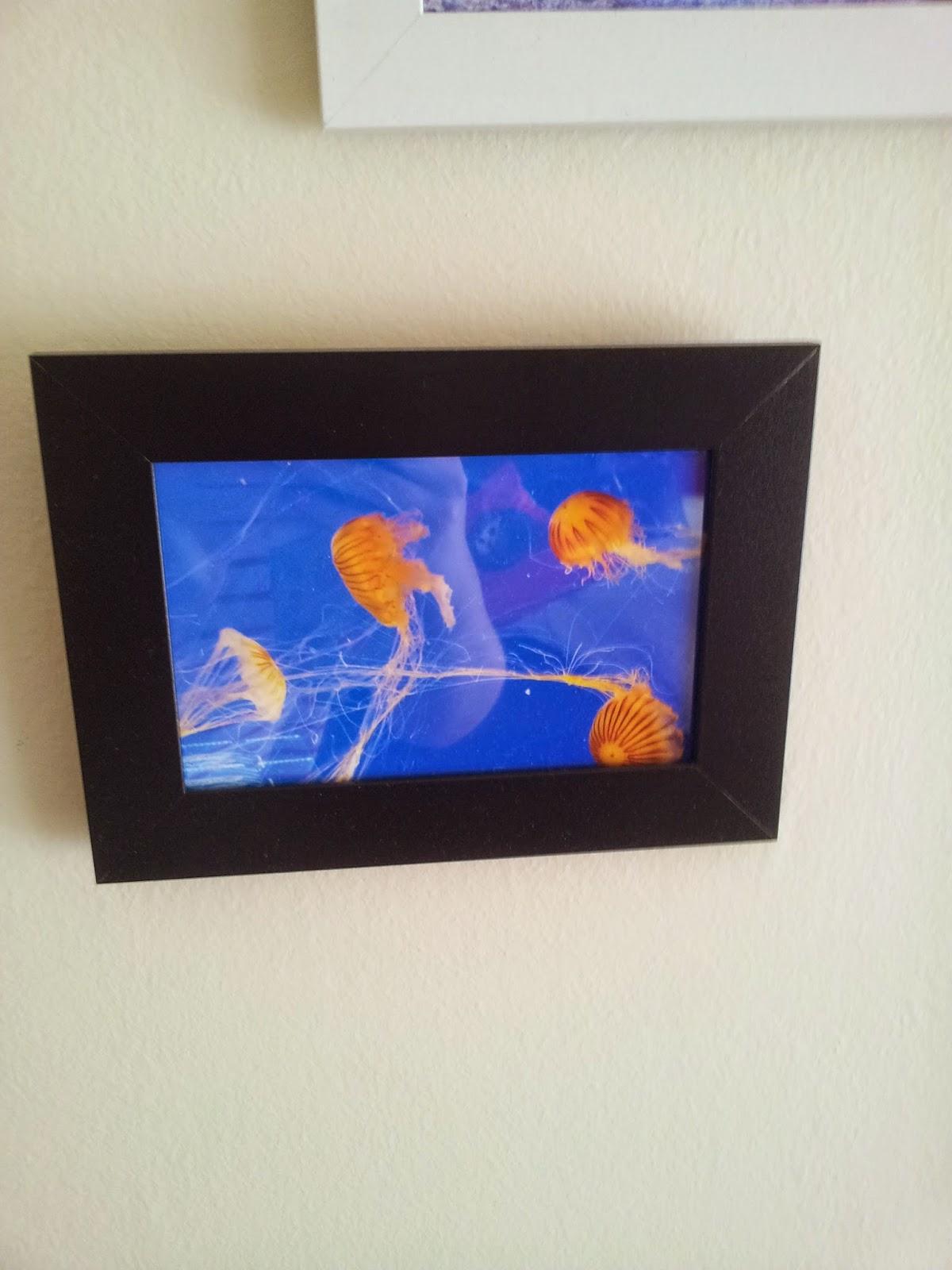 diy-cadre-aquarium-déco-méduse-décoration