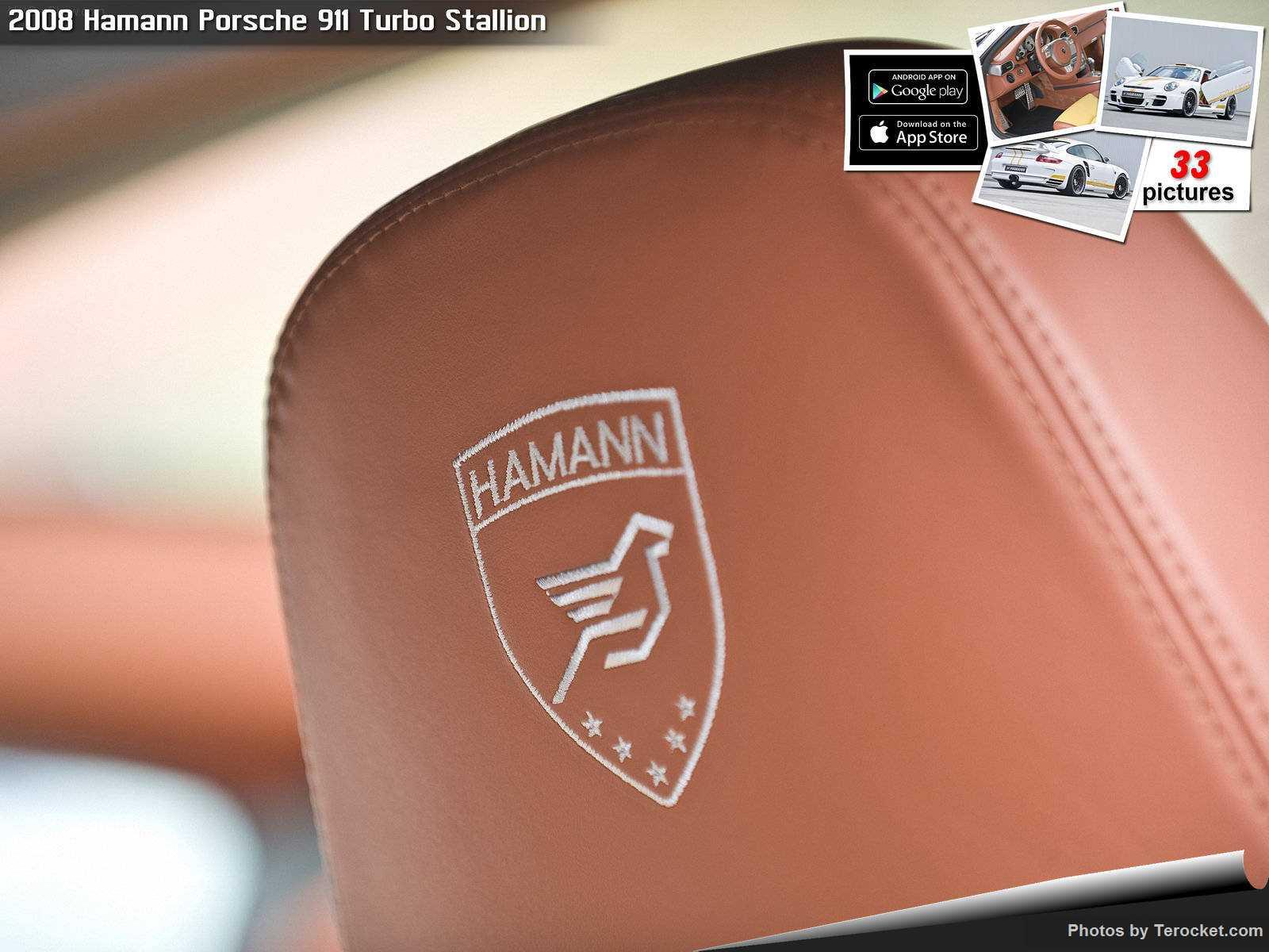 Hình ảnh xe ô tô Hamann Porsche 911 Turbo Stallion 2008 & nội ngoại thất