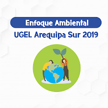 ENFOQUE AMBIENTAL 2019