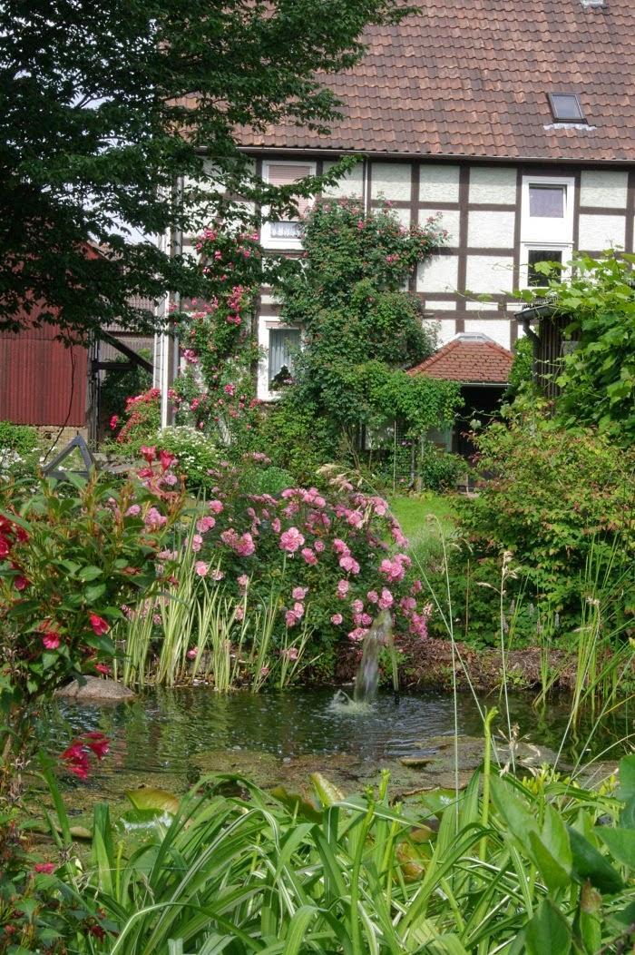 rudolfs park historischer rosen das veredeln von rosen. Black Bedroom Furniture Sets. Home Design Ideas