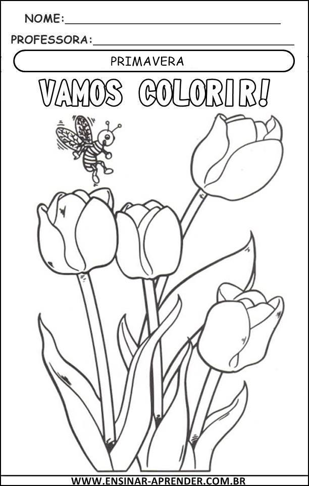 lindos desenhos para colorir primavera cantinho do educador infantil