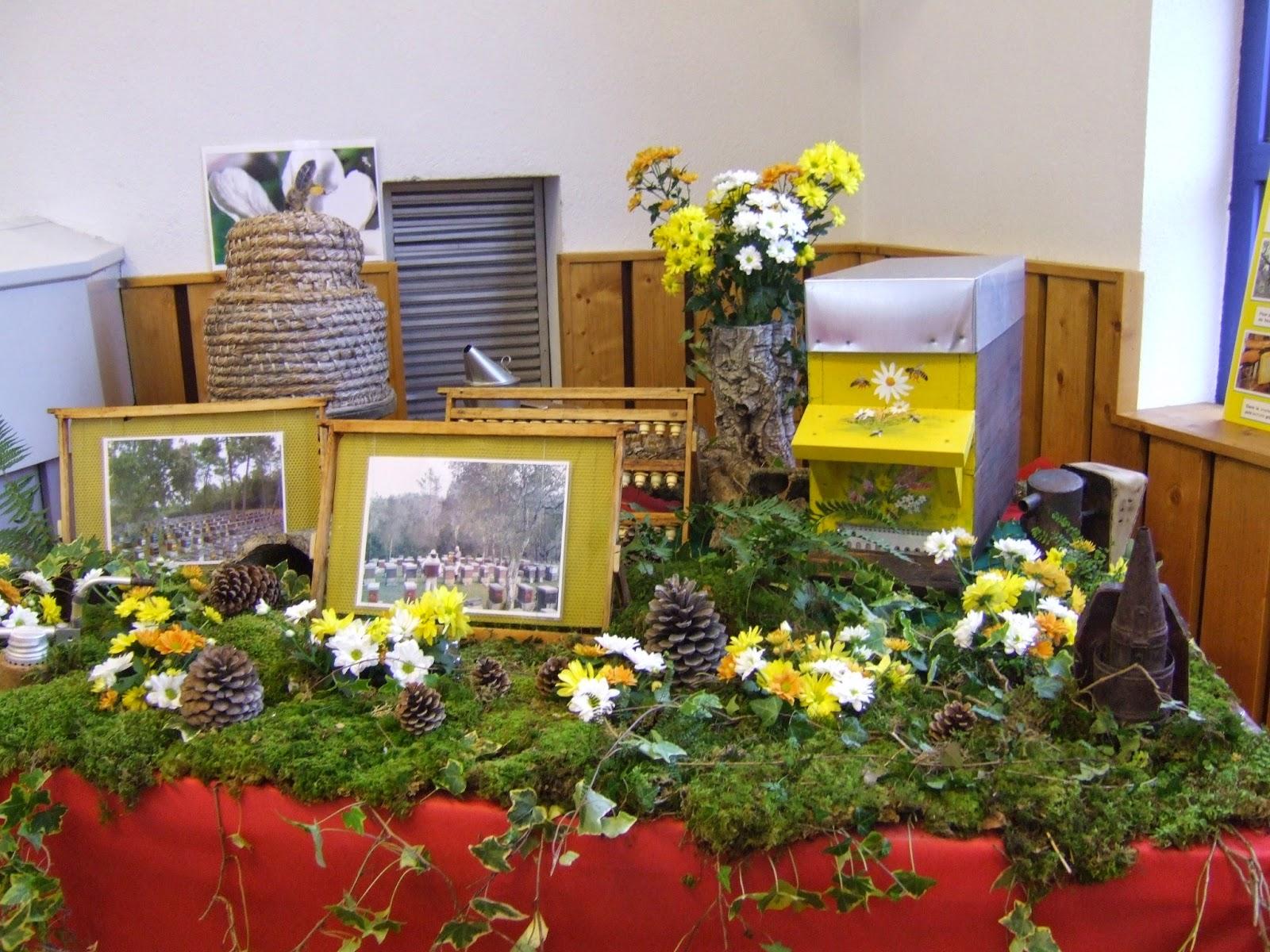 Amoma de haute savoie l 39 apiculture l 39 honneur for Salon apiculture