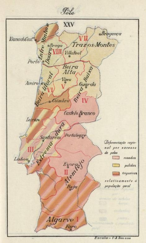 A pigmentação dos portugueses Mapa+da+Cor+da+Pele