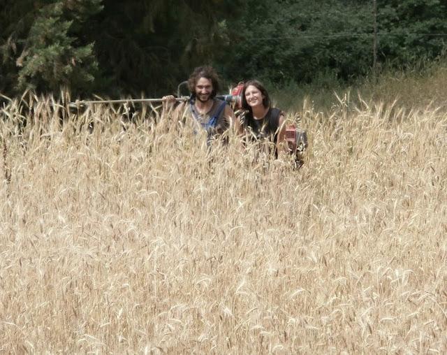 fattoria occupata firene compleanno grano