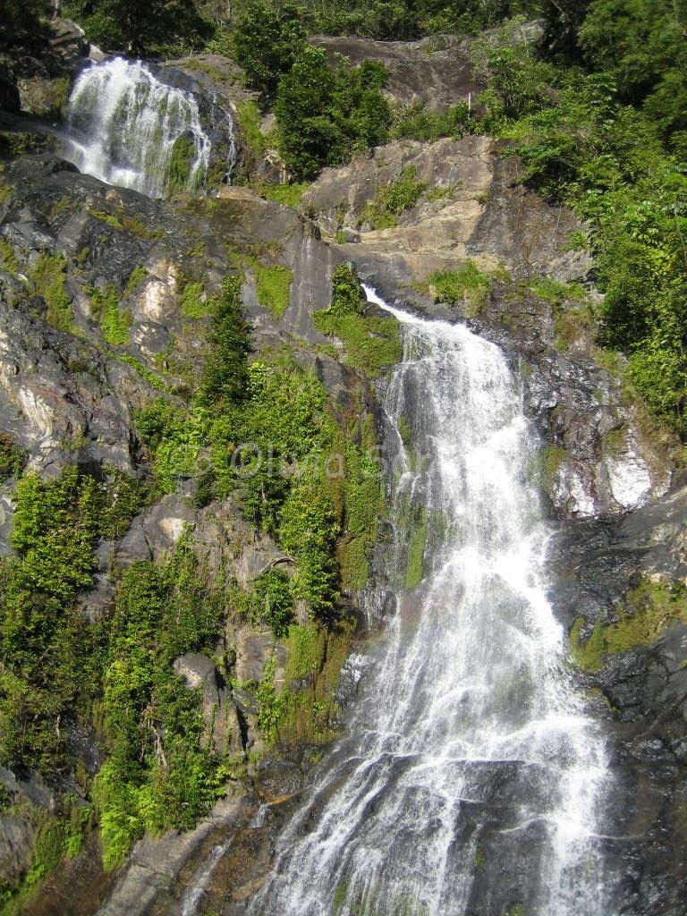Stoney Creek Falls, Cairns Tablelands, Queensland, Australie