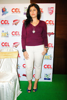 WWW.BOLLYM.BLOGSPOT.COM Actress Poonam Bajwa at CCL press meet Images Picture Stills Gallery 0003.jpg