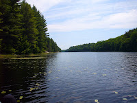 Kawartha Highlands Ontario Provincial Park Bottle Creek