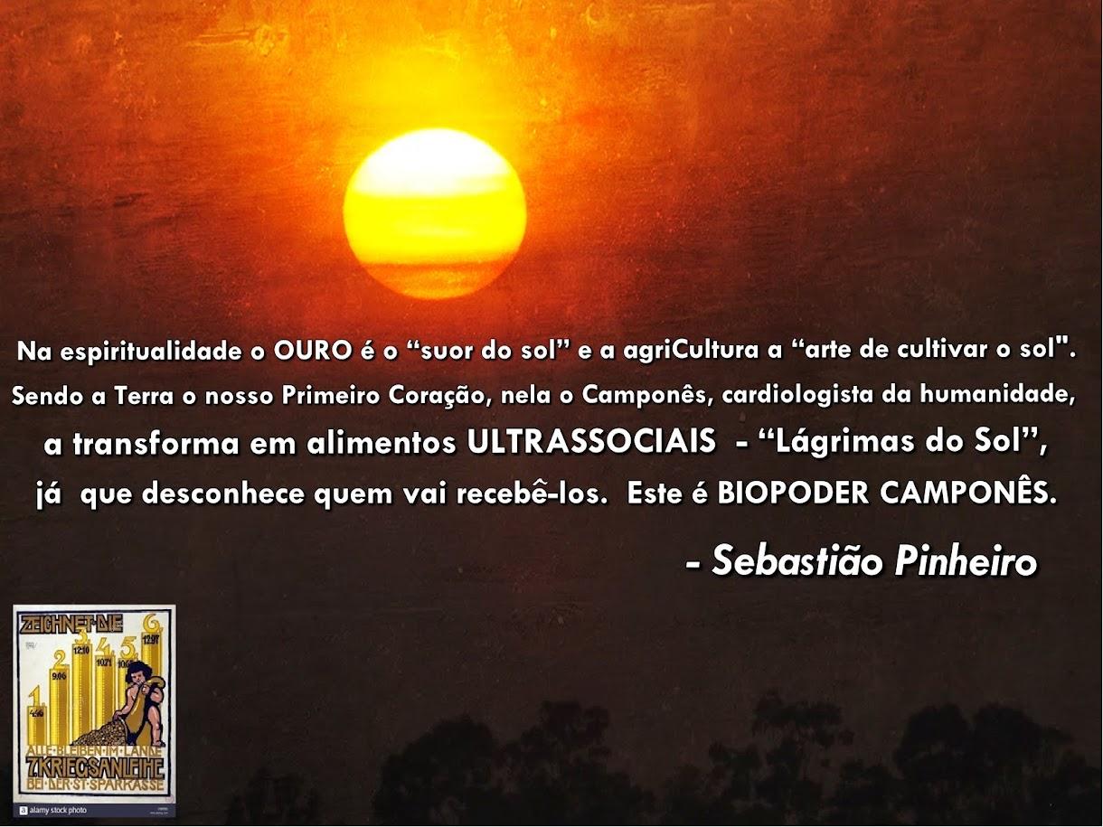 BioPoder Camponês