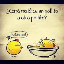 CHISTE DE POLLOS - CHISTES DE POLLITOS