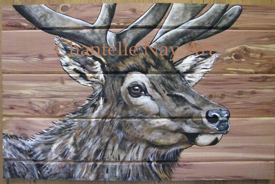 """""""Elk on Red Cedar"""""""
