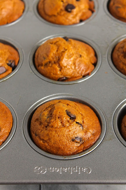 Pumpkin Chocolate Chip Muffins | The Chef Next Door