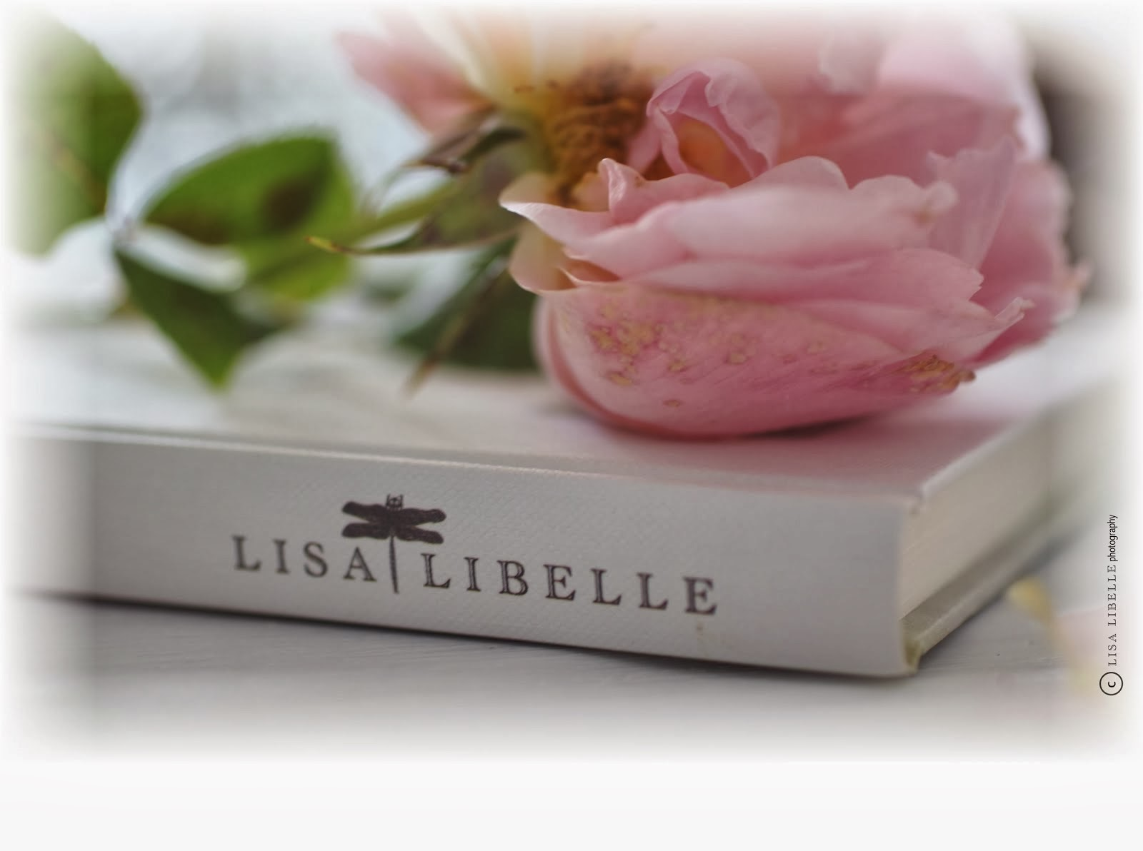 my Website LISA LIBELLE