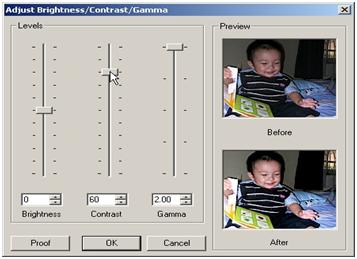 Tampilan ACDSee Saat Melakukan Penyesuaian Kontras Dan Kecerahan Gambar