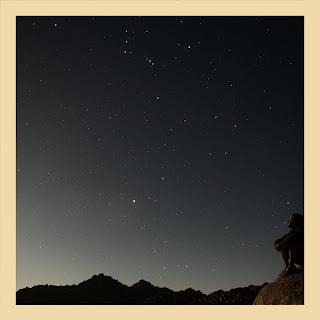 homme regarde ciel étoilé mexique