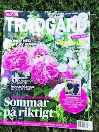 mitt växthus i allt om trädgård nr 9/2013