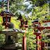 Wie ich nach Japan kam und was mich dort alles erwartete (Teil 6 - Begegnungen und das Jetzt)