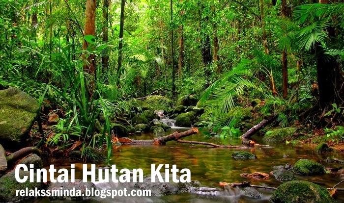 Cintai dan Kekalkan Hutan Di Malaysia