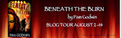Beneath the Burn Tour