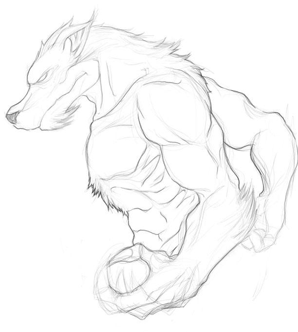 Dibujar hombres lobo anime - Imagui
