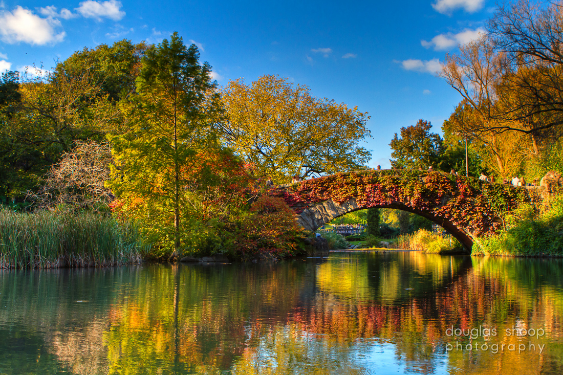 Douglas Shoop Photography Fall In Central Park