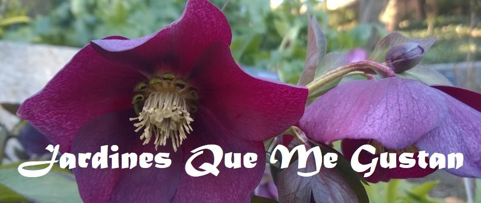 Jardines Que Me Gustan