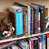 10 Suportes de livros para nerds leitores...