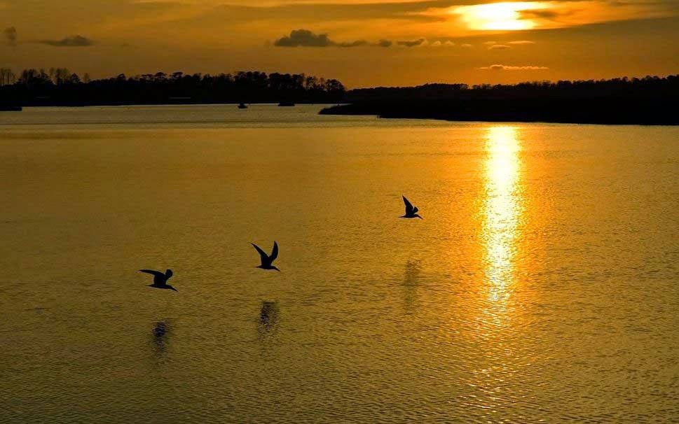 peaceful-sunset-good-night-picture