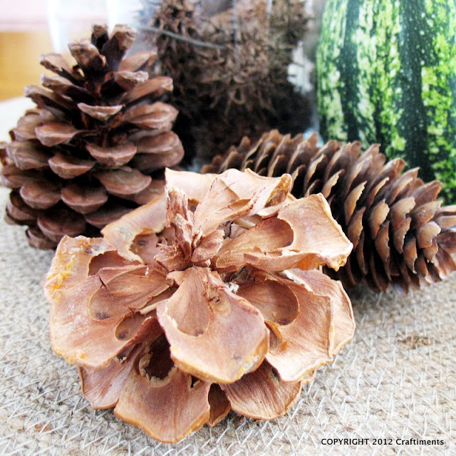 Craftiments:  Pinecones