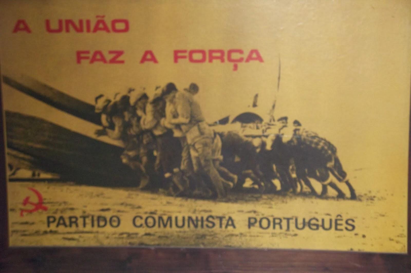 A FORÇA DA LUTA