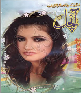 Aanchal Digest February 2013